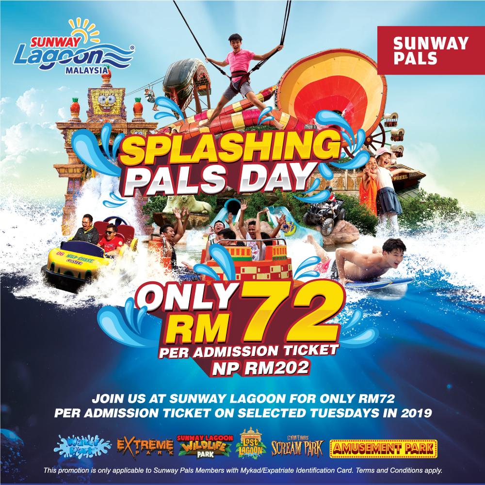Splashing Pals Day